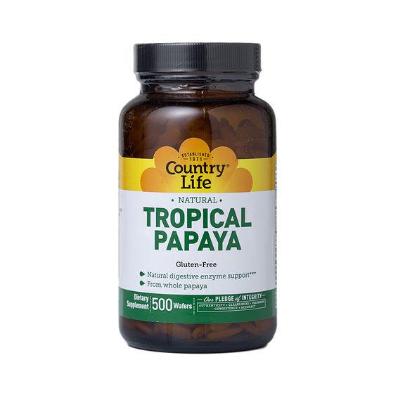 Papaya and enzymes