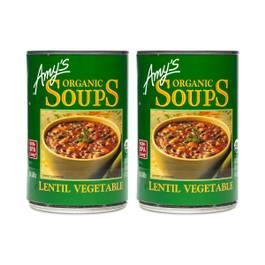 Organic Lentil Vegetable Soup (2-pack)