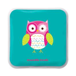 Owl Ice Pack, Set of 2