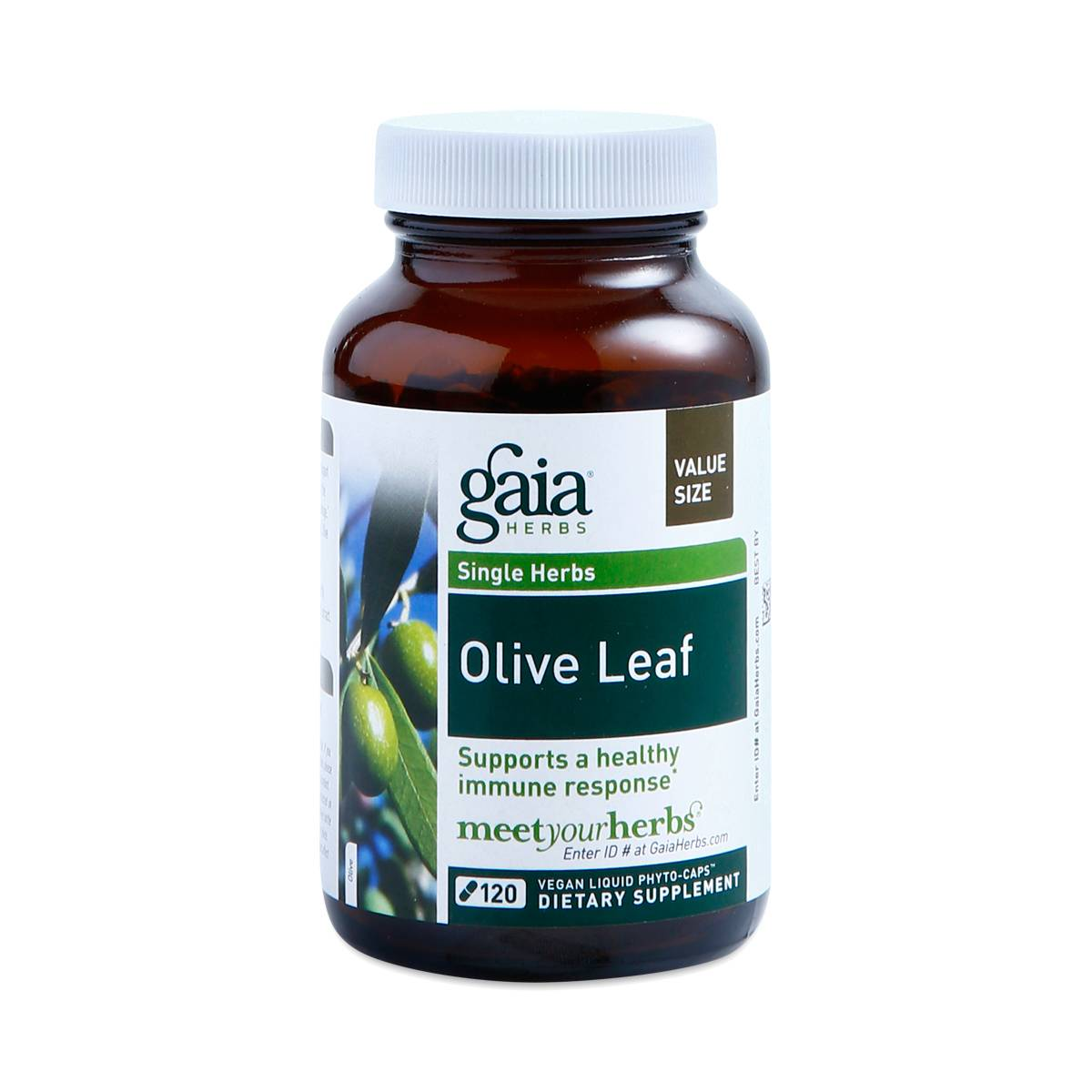 Menu For Olive Garden: Gaia Herbs Olive Leaf