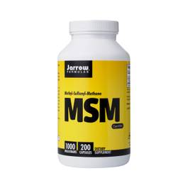 MSM Supplement