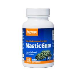 Mastic Gum (Pistacia lentiscus)