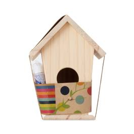 Design Your Own Bird House
