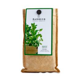 Organic Garden Herb Grow Kit: Mint