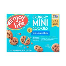 Crunchy Mini Chocolate Chip Cookies