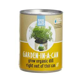 Dill: Garden in a Can