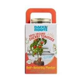 Self-Watering Tomato Planter