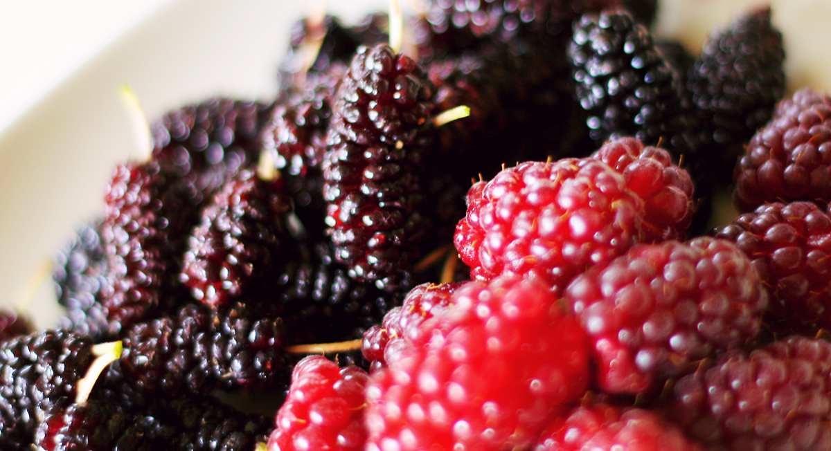 4 Inexpensive Superfoods With Cancer-Fighting Properties