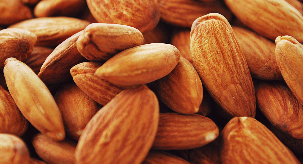Is It Really A Good Idea to Eat Almonds All Day Long?