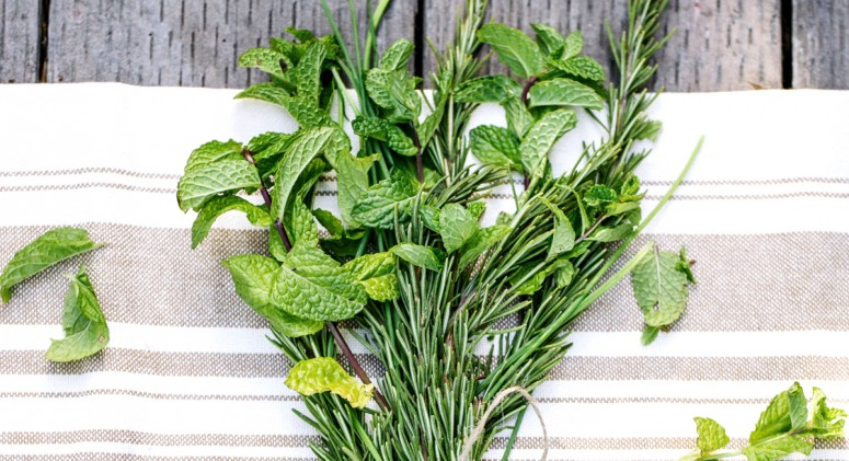 3 Herbal Remedies Any Beginner Can Use