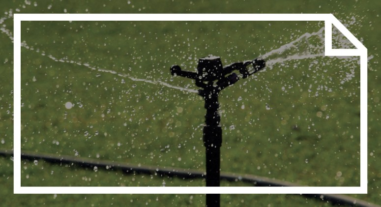 When It Comes to Saving Water, Tiny Changes Make a Huge Difference