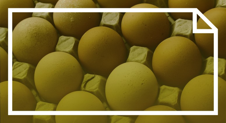 Liquid Eggs Turn Into Liquid Gold In The Wake Of Avian Flu