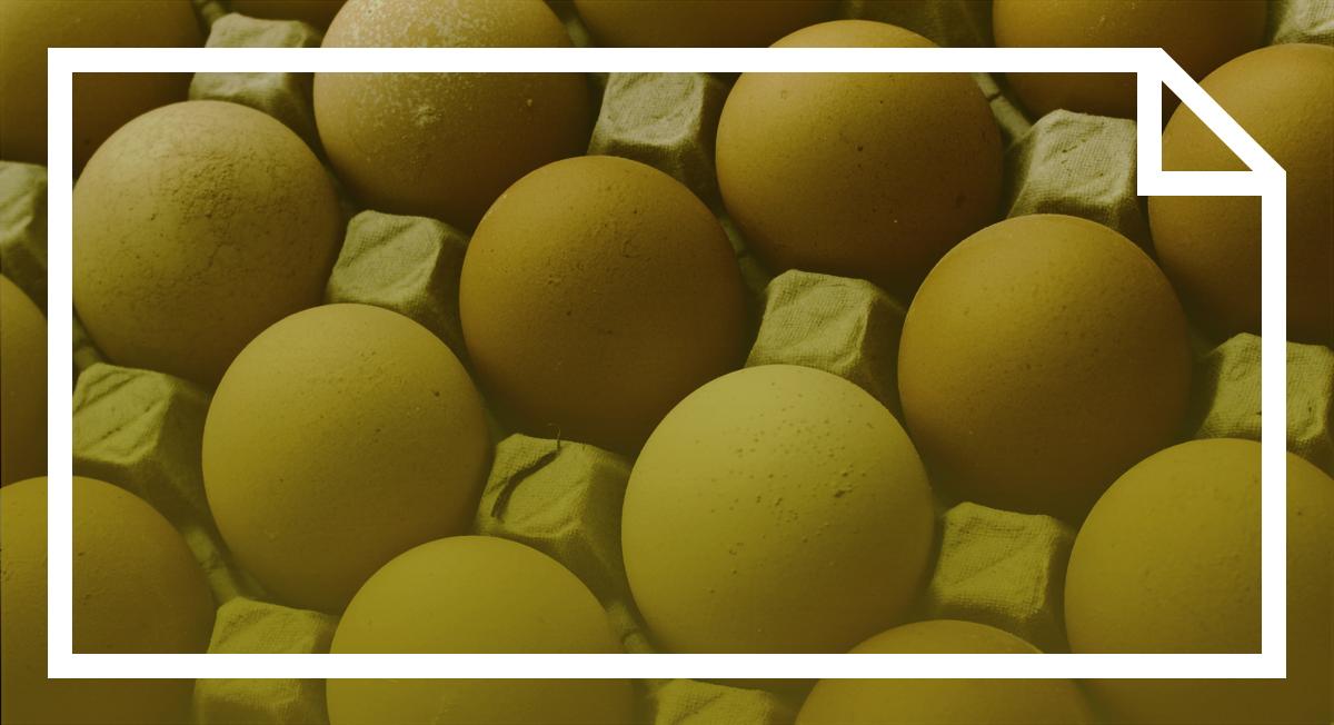 Liquid Eggs Turn Into Liquid Gold In The Wake Of Avian Flu