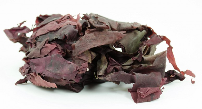 Would You Eat Seaweed That Tastes Like Bacon?