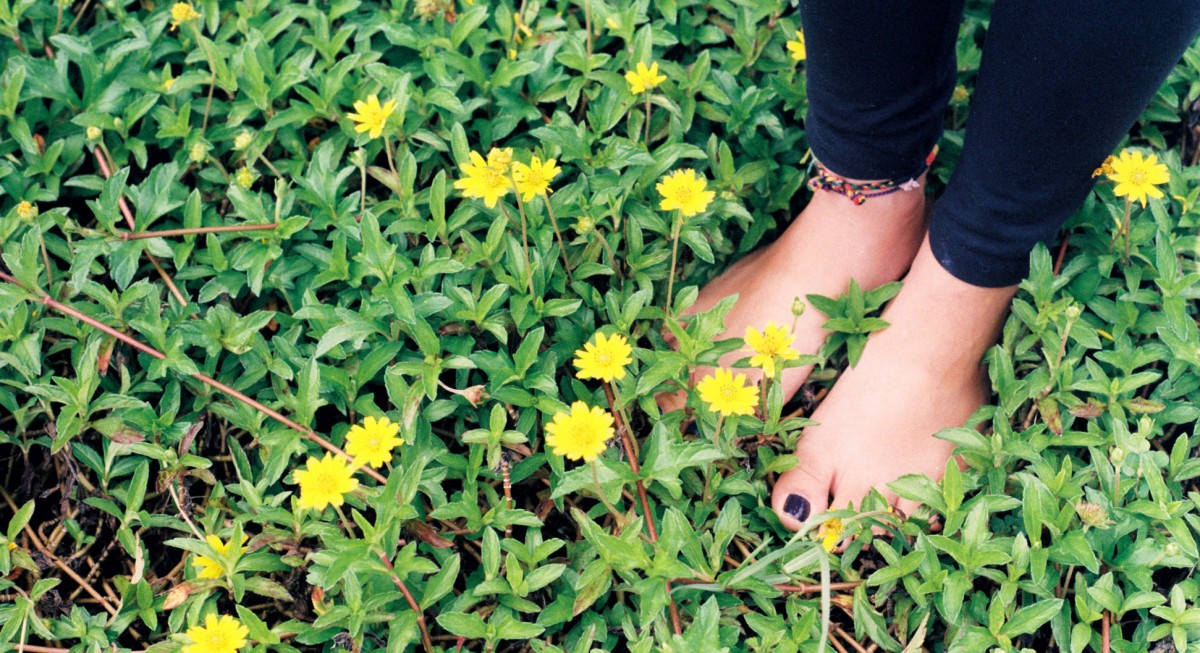 The Secret to a Healthy Immune System? It's Called Earthing