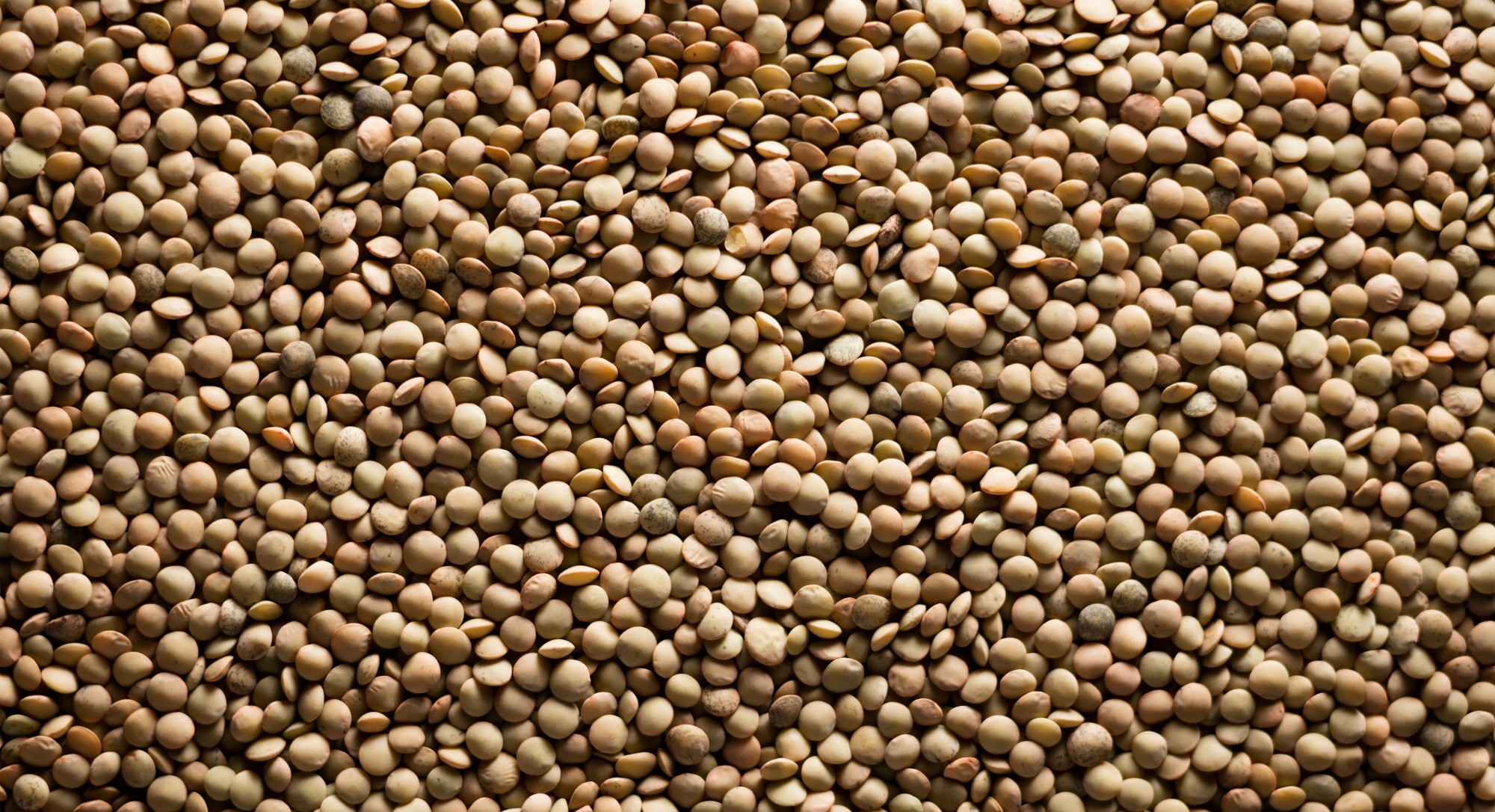 2016 Is Officially the 'Year of Pulses'—Because They're Really Good for You and the Planet