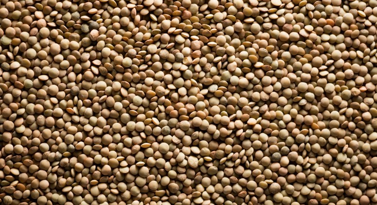 Ingredient of the Week: Protein-Packed Lentils Are the Ultimate Autumn Dish