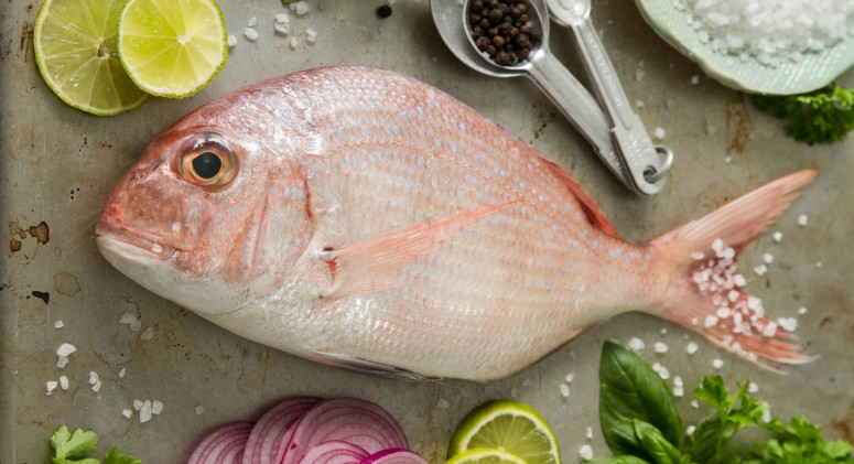 1 in 5 Pieces of Seafood May Be Mislabeled, Says New Oceana Report