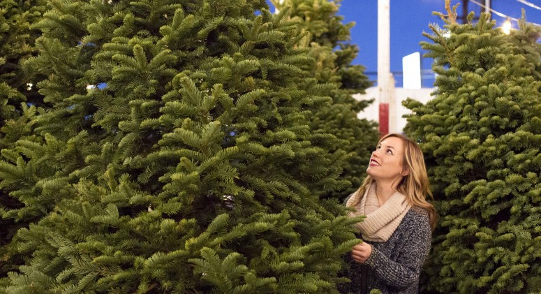 Real or Faux Fir: Which Is the More Eco-Friendly Christmas Tree?