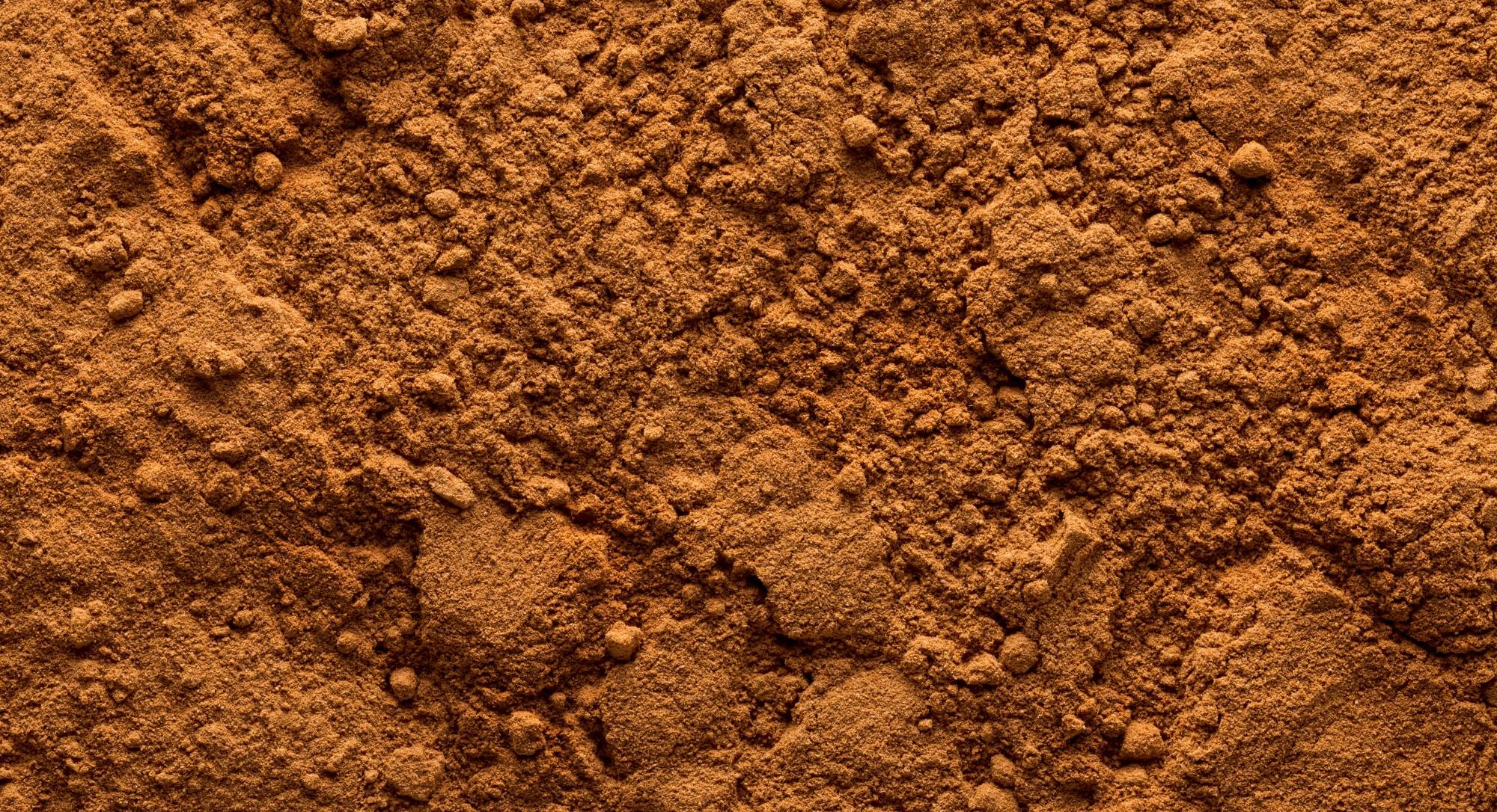 Ingredient of the Week: Cinnamon, The Brain-Boosting, Heart-Protecting Superfood Spice