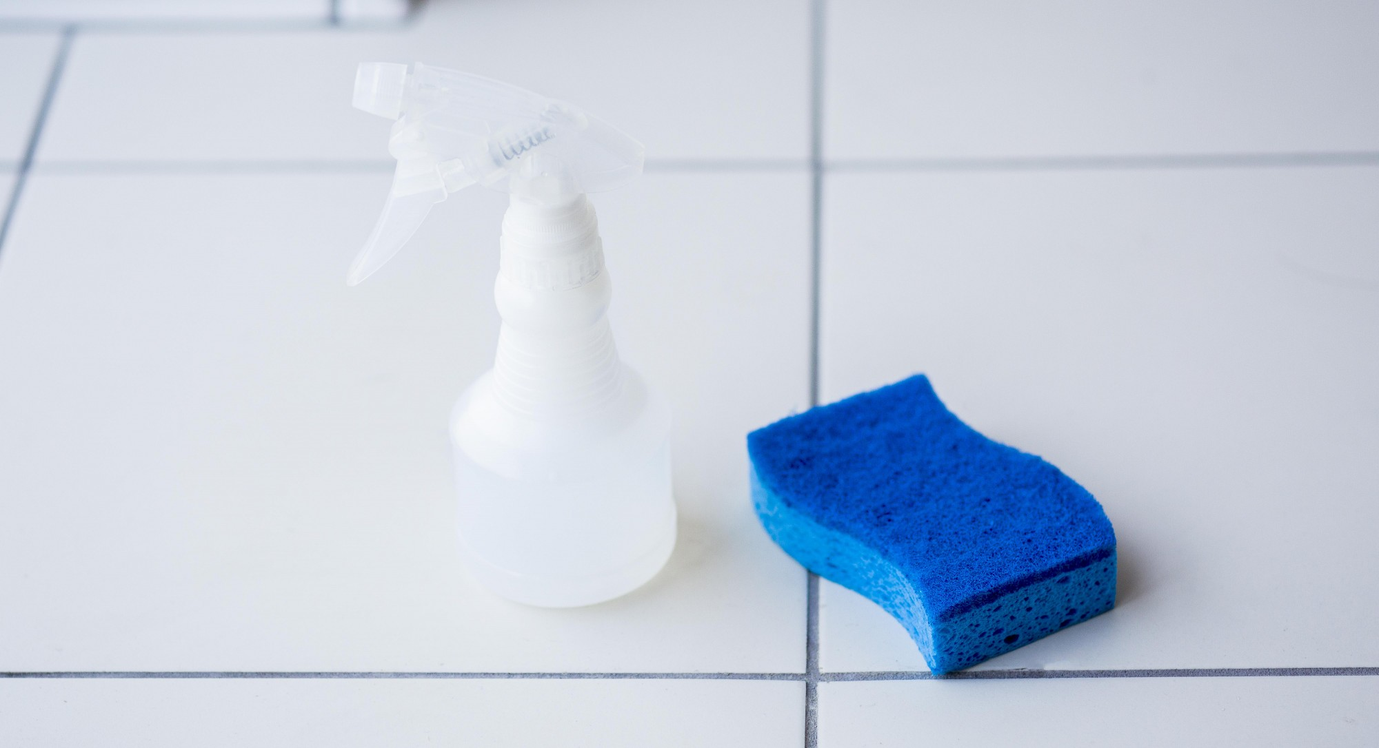 Tip of the Week: Get Rid of Mold With This Bizarre Treatment