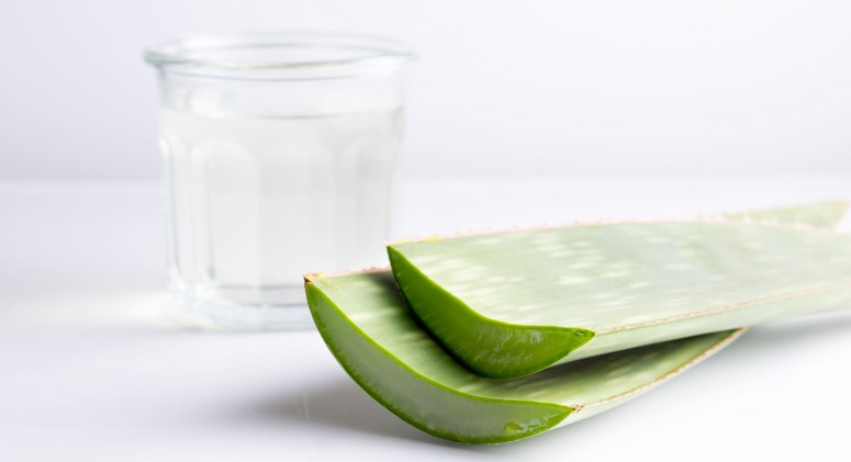 Ingredient of the Week: Aloe Vera Juice is an Unexpected Beauty Booster