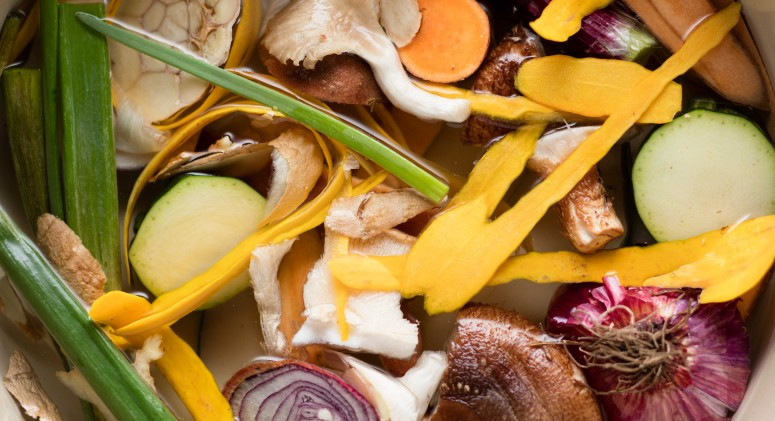 America's Food Waste Problem in 5 Shocking Stats