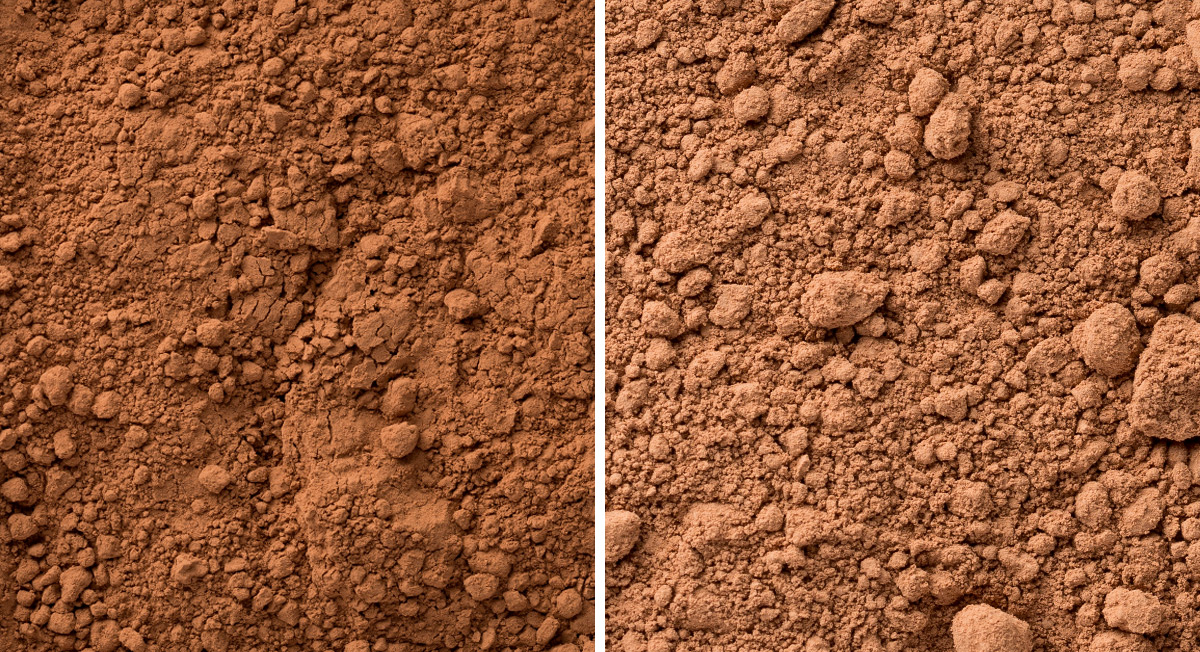 What's the Difference Between Cacao vs Cocoa?