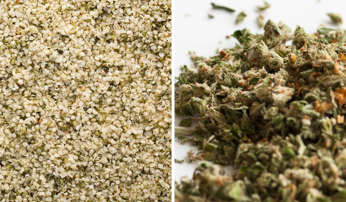 Hemp vs. Marijuana - Thrive Market