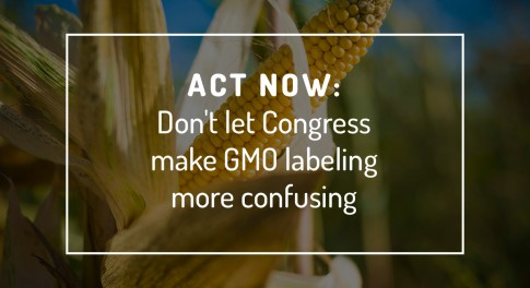What Backers of the 'GMO Compromise' Bill Don't Want You to Know