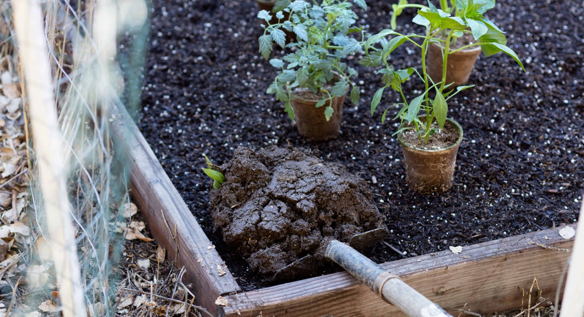 How to Compost at Home