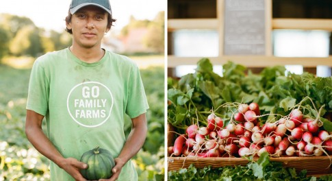 10 Questions You Should Be Asking at the Farmers Market