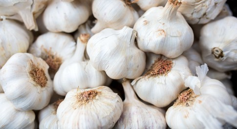 The Benefits of Raw Garlic