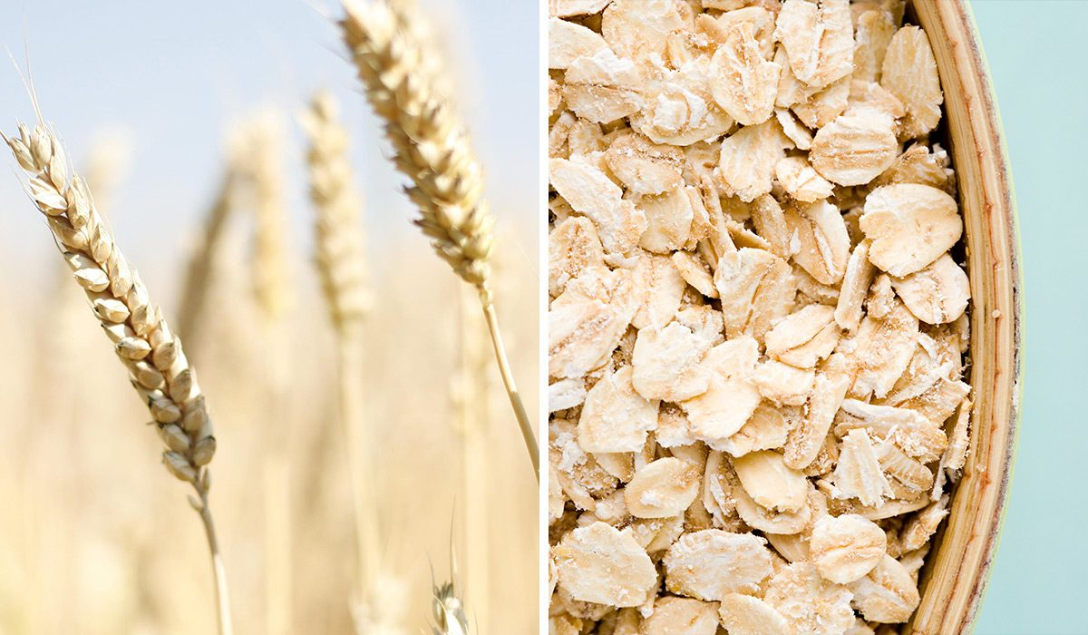 Oat Flour Vs. Wheat Flour