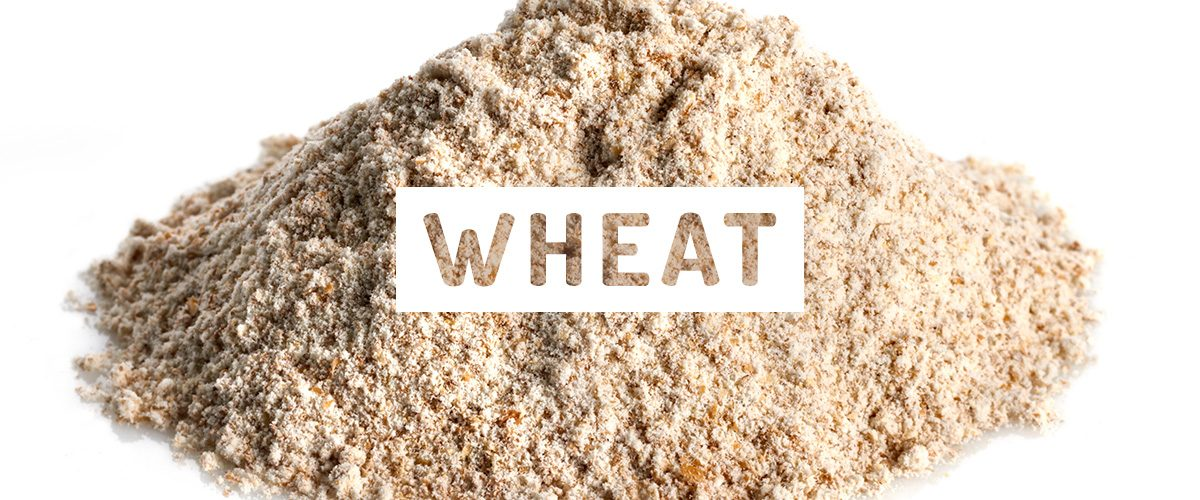 wheat-flour