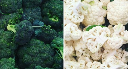 Broccoli Vs. Cauliflower