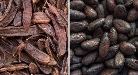 Carob Vs. Chocolate