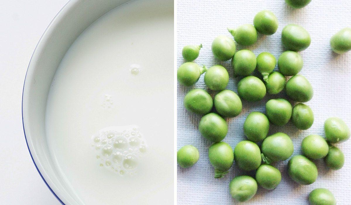 Whey Protein Vs. Plant Protein