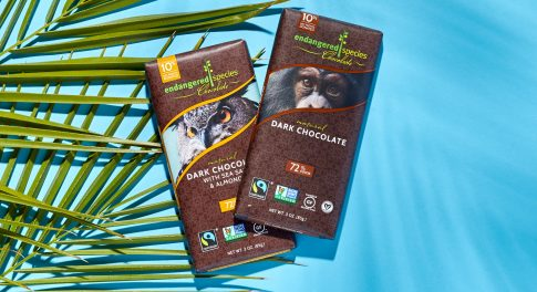 Indulge With a Purpose: Your Chocolate Cravings Can Help Save Endangered Animals