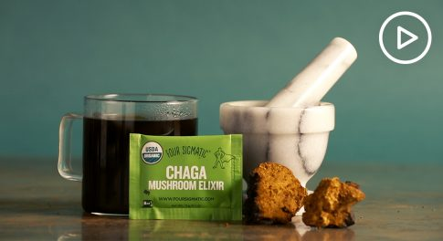 Chaga 101: Learn All About This Sought-After Superfood (Watch the Video!)