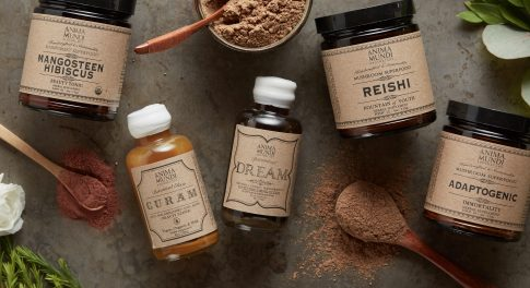 How to Set Up a Home Apothecary With Anima Mundi
