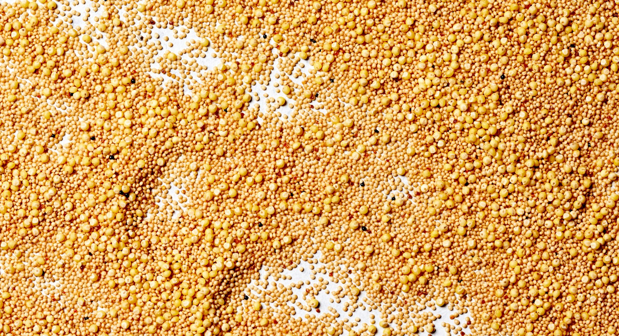 What's the Difference Between Millet vs Amaranth?