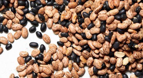 Black Beans vs. Pinto Beans