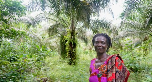 Dr. Bronner's Transforms Farmland in Ghana With Dynamic Agroforestry