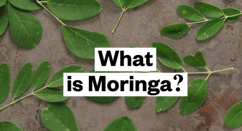 What Is Moringa?