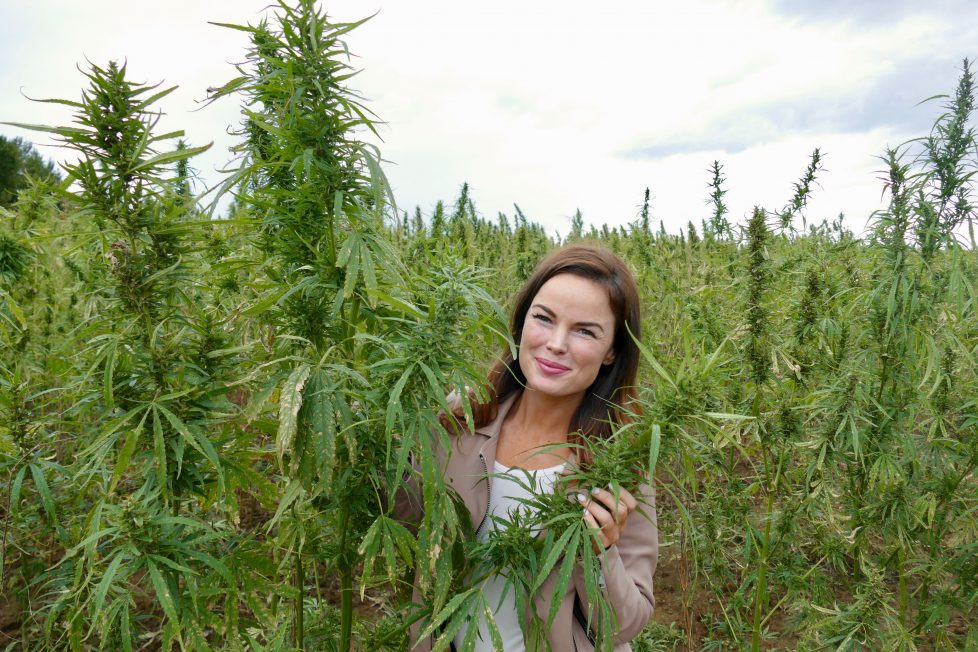 Winged Specializes in Hemp Extract Products for Women—Meet the Founder