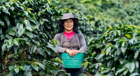 Want to Combat Climate Change and Support Peruvian Farmers? Brew a Cup of Thrive Market Coffee