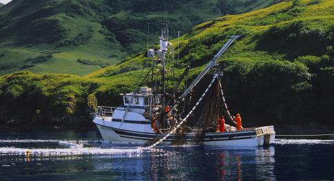 Spotlight On: Thrive Market Seafood