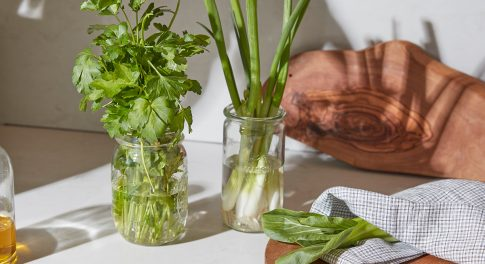 4 AIP Diet Recipes from Functional Medicine Expert Chris Kresser