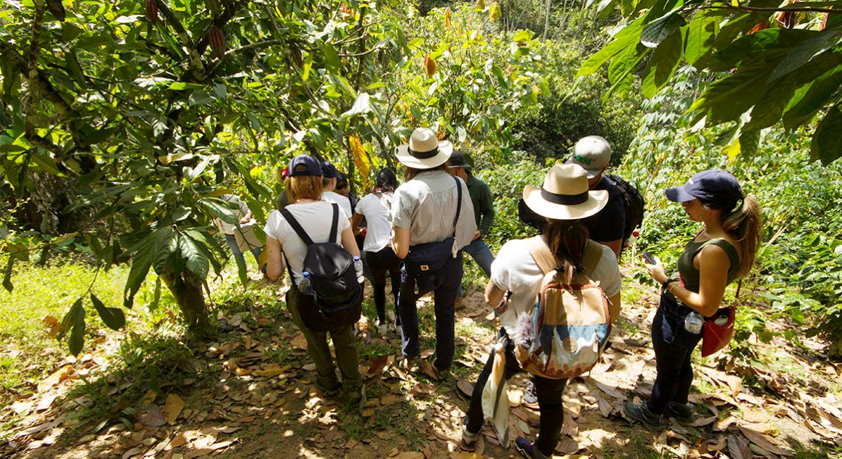 GoodSam employees and cacao farmers in Colombia